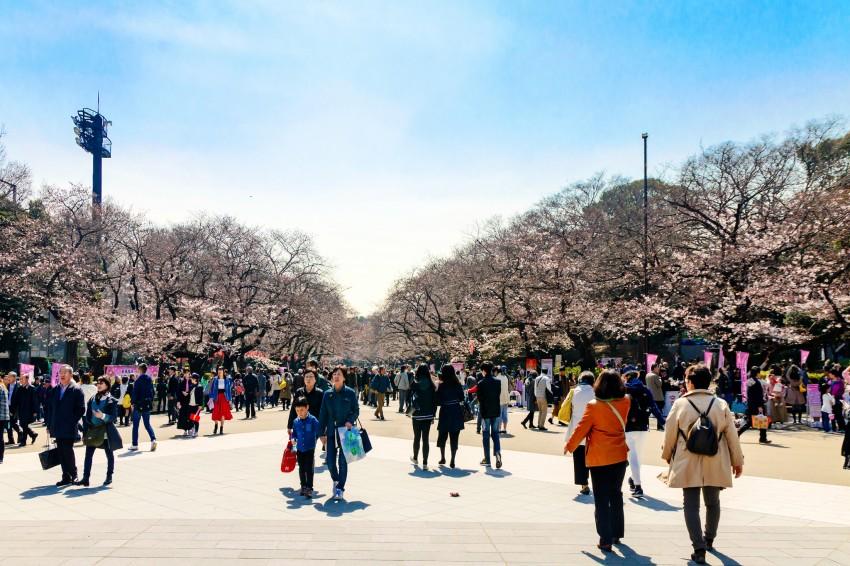 UenoPark_flickr-Toshihiro Gamo